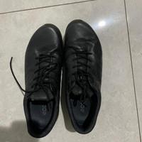 ecco golf shoes biom G3 black