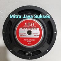 Speaker Audax 12 Inchi AX 12200 MB AX12200MB