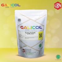 Pewarna Makanan Kuning Kuinolin Merk Galicol CI 47005 - Packaging 1Kg
