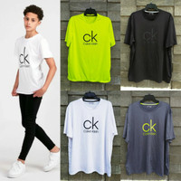 Calvin klein Logo t-shirt spandek man