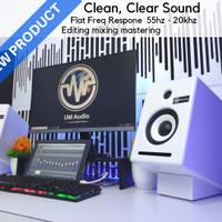 Speaker Monitor Recording Flat UM Audio