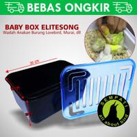 BABY BOX WADAH UNTUK ANAKAN BURUNG LOVEBIRD MURAI KENARI KACER DLL