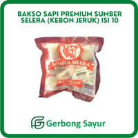 Bakso Sapi Premium Sumber Selera (Kebon Jeruk) Isi 10