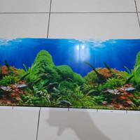 Background / Latar Belakang Aquarium Tinggi 60 cm Panjang per 10 cm