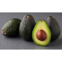Imported Fresh Avocado Australia