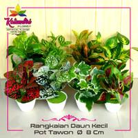 Rangkaian Daun Pot Tawon 8 Cm - Tanaman Hias Palsu Artificial Plastik