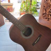 Gitar Cowboy GW 240 NS