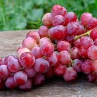 buah anggur merah Segar1kg - 500 gram