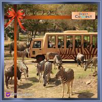 Tiket Bali Safari Explorer - Promo Pay Now Visit Later
