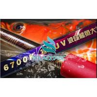 Lampu Tanning Celup T5 MAYIN INTERNATIONAL 6700K Aquarium Ikan Arwana