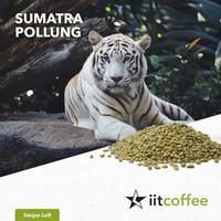 Arabica Green Beans - Sumatra Pollung Semi Washed 1Kg