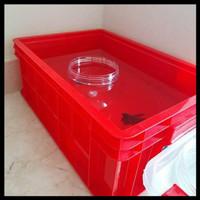 Terlaris Green Leaf 2245 P Box Container Industri / Bak Kolam Ikan