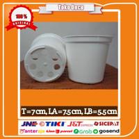 Pot Mini Untuk Anakan