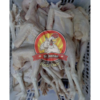 Ayam potong pejantan fresh ukuran 900 gram hidup
