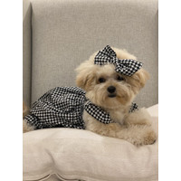 baju anjing poodle jumpsuit houndstooth free pita pawpawsome projects