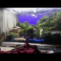 Aquarium aquascape waterfall fullset murah 60cm/aquascape fullset