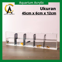Aquarium Acrylic Soliter Cupang 5 Sekat / Akuarium Ikan Cupang Murah