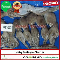 Baby Gurita Segar-Beku 1 kg / baby gurita / baby octopus Frozen murah