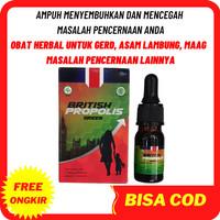 British Propolis untuk asam lambung obat herbal gerd Maag Kronis Ampuh