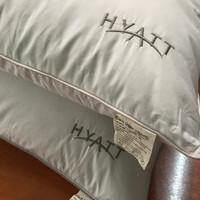 GOOSEDOWN 70% Pillow (Bantal Hotel) SOFT - SPEC HYATT uk.50x70