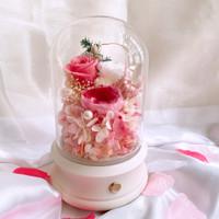 Celestial Speaker - Preserved Flowers 5 years Her Rose