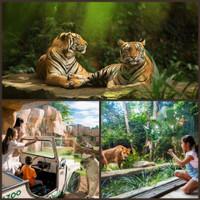 Voucher Tiket Bali Zoo Park Singapadu Gianyar ( Anak )