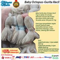 Baby Gurita atau Octopus kecil 1 kg isi sekitar 30-40 ekor