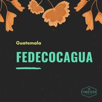 Arabica Green Coffee Bean - Guatemala Fedecocagua