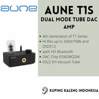 AUNE T1s Dual Mode Tube DAC AMP Upgrade From T1SE