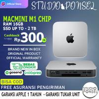 Apple Mac Mini M1 Custom 16GB RAM / 512GB & 256GB SSD / MacMini 2020