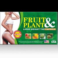 Pasti Ready Fruit And Plant Slimming Capsule Original Obat Herbal