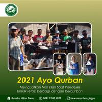 Program Berbagi Qurban Domba / Kambing Kurban