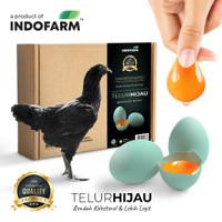 Telur Hijau dari Ayam Hitam (Rendah Kolesterol)
