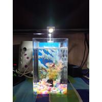 Aquarium Mini LED - Aquarium Soliter Cupang - Aquarium Arkilik Guppy