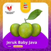 Buah Jeruk Bayi Jaminan Manis Jeruk Baby Java Fresh segar Alami