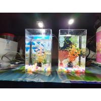 Aquarium Mini LED - Aquarium Soliter Cupang - Aquarium Arkilik Mini
