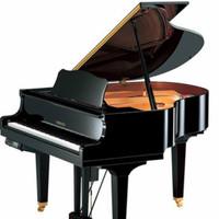 Yamaha Disklavier Baby Grand Piano DGB1KENST-PE