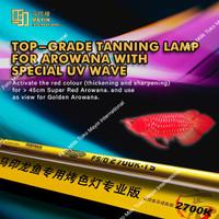 Lampu TANNING celup submersible T5 MAYIN 2700K Aquarium ikan Arwana