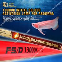 Lampu TANNING celup submersible T5 MAYIN 13000K Aquarium ikan Arwana
