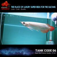Ikan Arowana Super Red High Metallic kualitas Premier (Grade A) - Tank 06