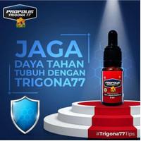propolis trigona 77 oil