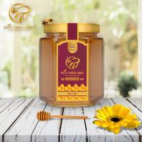 Raw Honey Madu Mentah Organik Pure Honey Madu Murni Asli Hutan 350gr