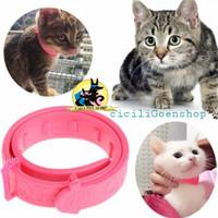 Kalung Kucing Collar Cat Obat Anti Kutu Small Ukuran Kecil Murah Bagus