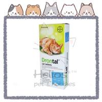 Drontal cat obat cacing kucing bayer