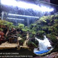 aquarium aquascape full set/ paket lengkap aquascape