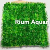 RUMPUT DASAR PLASTIK SINTETIS Aquarium Aquascape MURAH