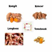 KUNYIT / KENCUR / LENGKUAS / TEMULAWAK SEGAR / 250gram - kunyit