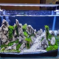 aquarium aquascape full set paket 40x20x30 cm