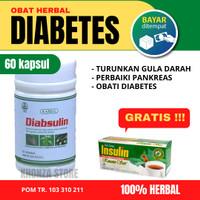 Obat Sakit Gula Darah Diabetes Basah Kering Herbal Kencing Manis