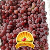 buah anggur merah redglobe 500gram